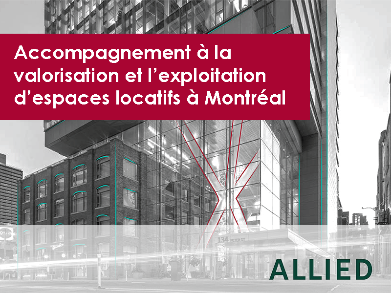 Accompagnement ALLIED